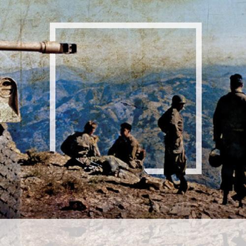 Portfolio -Algérie